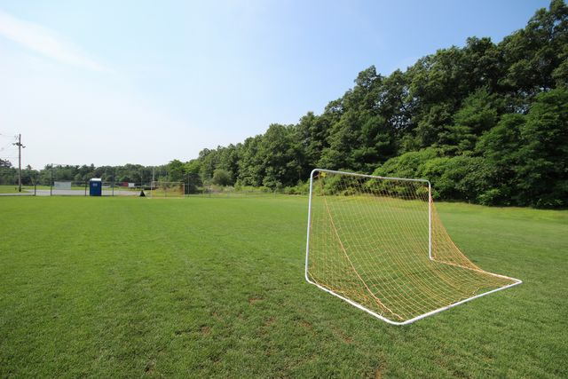 Soccer field with goals