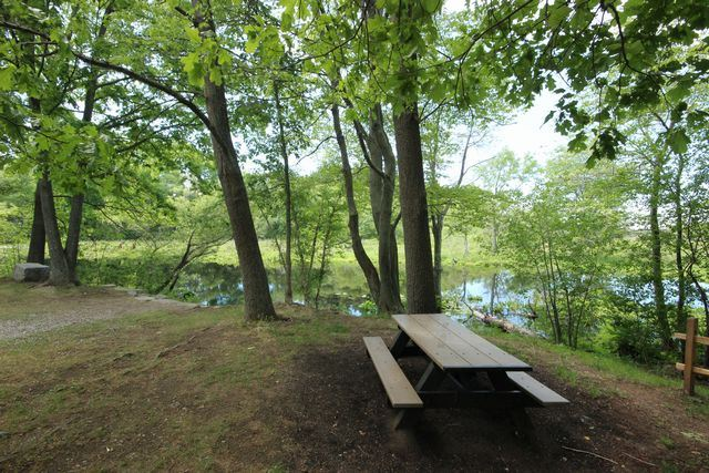 Picnic bench under trees beside pond